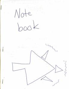 Notebook - Ida
