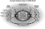 complex adaptive systems diagram